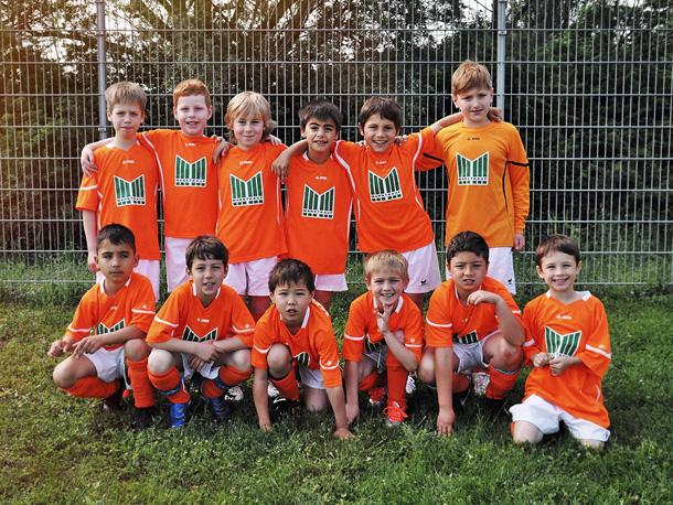 SG Viernheim - F-Jugend 2013